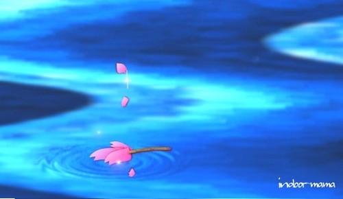 流水に散る桜