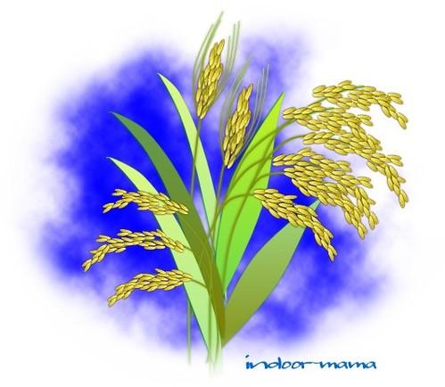 実りの秋~五穀豊穣の祈り