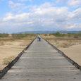 木津川流れ橋Ⅱ