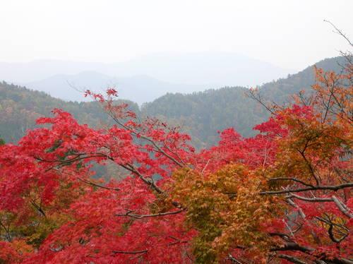 霞む比叡山