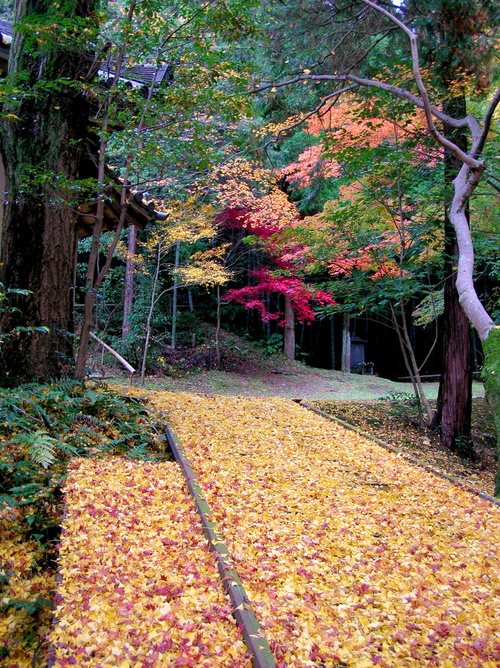 今熊野観音寺Ⅲ