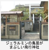 Hikouzinnzyahikoukinohi