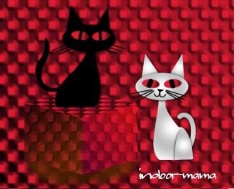 Catscc