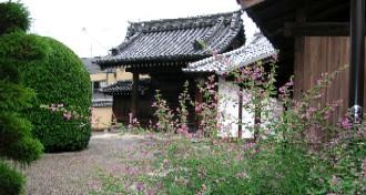 Houkyouzihagi2330