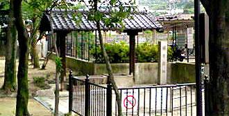 Sakuraiato330