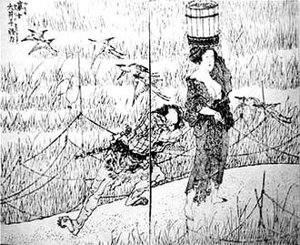 Ooikohokusaimanga