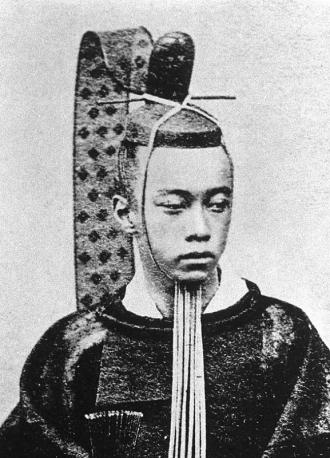 Tokugawaakitake800a